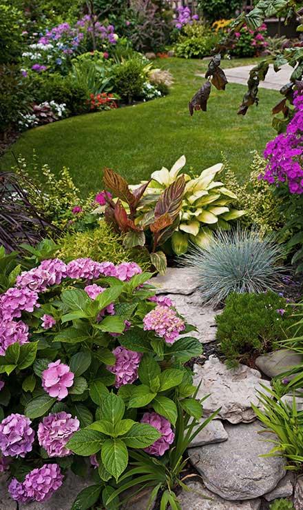 New Beginning Landscape & Remodel LLC Landscaping