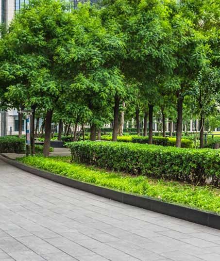 New Beginning Landscape & Remodel LLC Commercial Grounds Maintenance