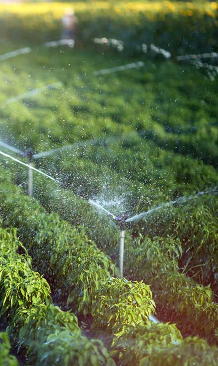 New Beginning Landscape & Remodel LLC Irrigation System Repair