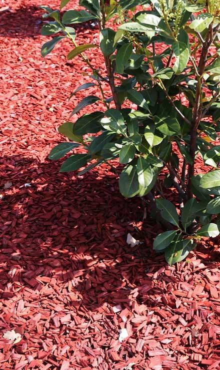 New Beginning Landscape & Remodel LLC Mulching