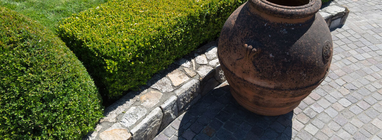 Landscaping Company, Lawn Care Services and Landscaping Services
