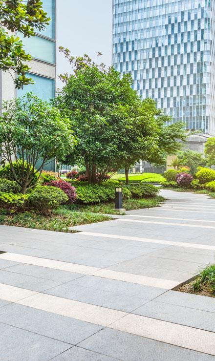New Beginning Landscape & Remodel LLC Landscaping Company